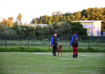 Training_13