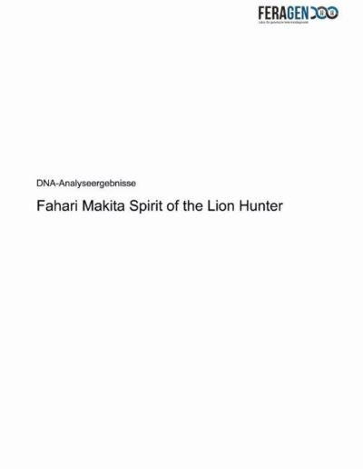 201014-23772 DC 3-0-Fahari Makita Spirit of the Lion Hunter_Seite_01